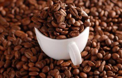 Tại sao gọi là cà phê chồn?