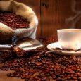 cà phê chồn tươi đảm bảo chất lượng đồng đều