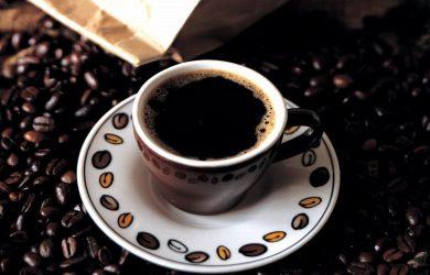 cà phê chồn đã chinh phục tất cả những ai thưởng thức