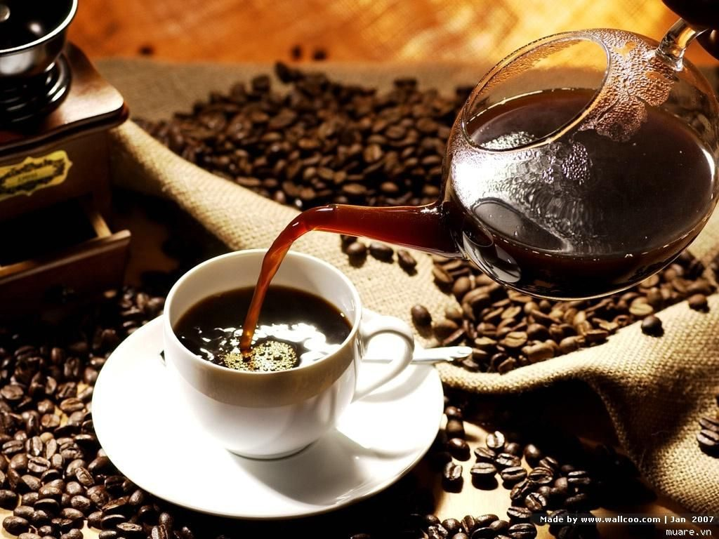 Thưởng thức cà phê Buôn Ma Thuột giữa núi rừng Tây Nguyên.