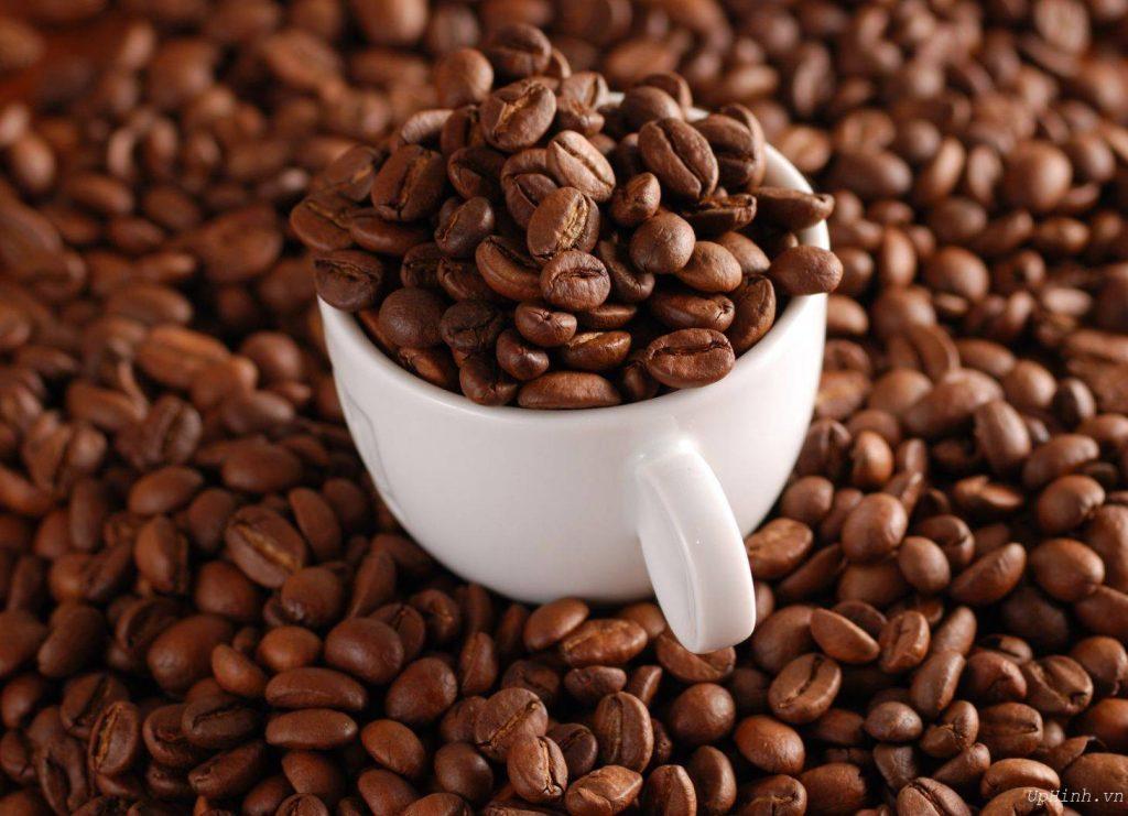 Mua cà phê hạt rang nguyên chất Buôn Ma Thuột tại Cà Phê Nguyên Chất