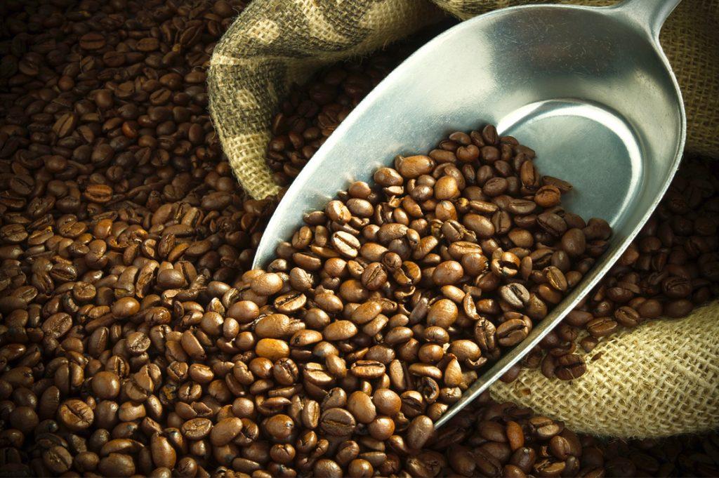 Có nhiều dòng cà phê với đặc điểm hương vị khác nhau.